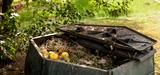 Dobrze utrzymany kompostownik ma przyjemny zapach leśnej próchnicy