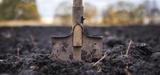 EEA: degradacja gleb i gruntów może skutkować obniżeniem jakości życia